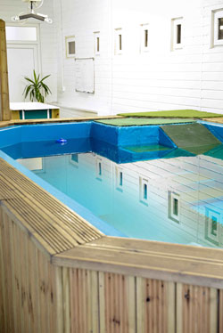 The pool in the Canine Hydrotherapy Centre